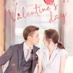 Download Drama China Once We Get Married Subtitle Indonesia